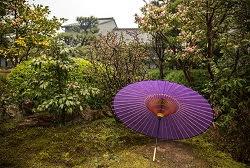 japonskie_bumazhnye_zonty_3.jpg