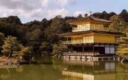 обои The Golden Pavilion / Храм Кинкакудзи (Золотой павильон) в Японии / Japan вода, деревья, лес...