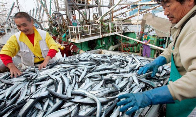 japanese fishing industry essay